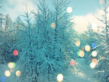 ДИВОВИЖНІ ПИТАННЯ (нотатки телефоністки) кінець грудня 2018 року