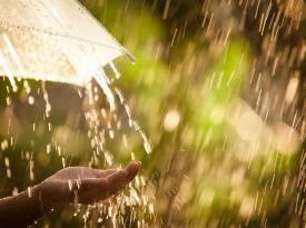 Синоптик рассказал украинцам, какой будет погода августе: неожиданный прогноз