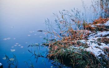 В Украину идет потепление до + 11°