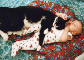 Сон с домашними животными полезен для здоровья
