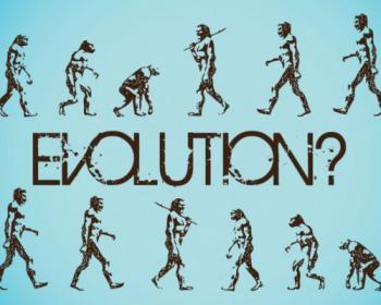 Ученые: Эволюция отдала предпочтение необразованным людям