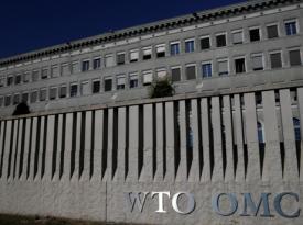 Проигрыш Украины в ВТО: причины и последствия