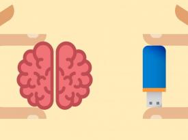 14 естественных способов улучшить память