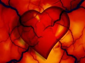 Врачи назвали главный витамин для здоровья сердца