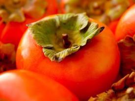 12 продуктов для здоровья и защиты щитовидной железы