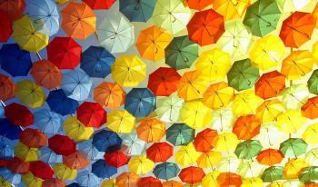 Как выбрать зонт: практические рекомендации