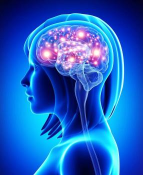Почему мозг в состоянии усталости не работает: ответ ученых